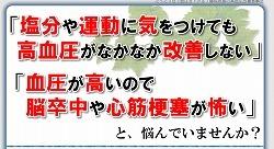 高血圧藤城01.jpg